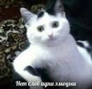 Зыков Александр   Курган   31