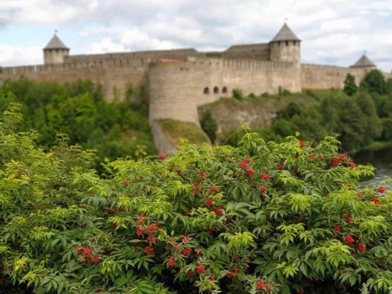 Ивангородская крепость и Шепелевский маяк (+Копорье и исторический квартал Парус...