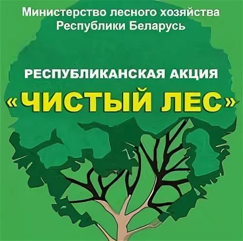 Республиканская акция   «Чистый лес»