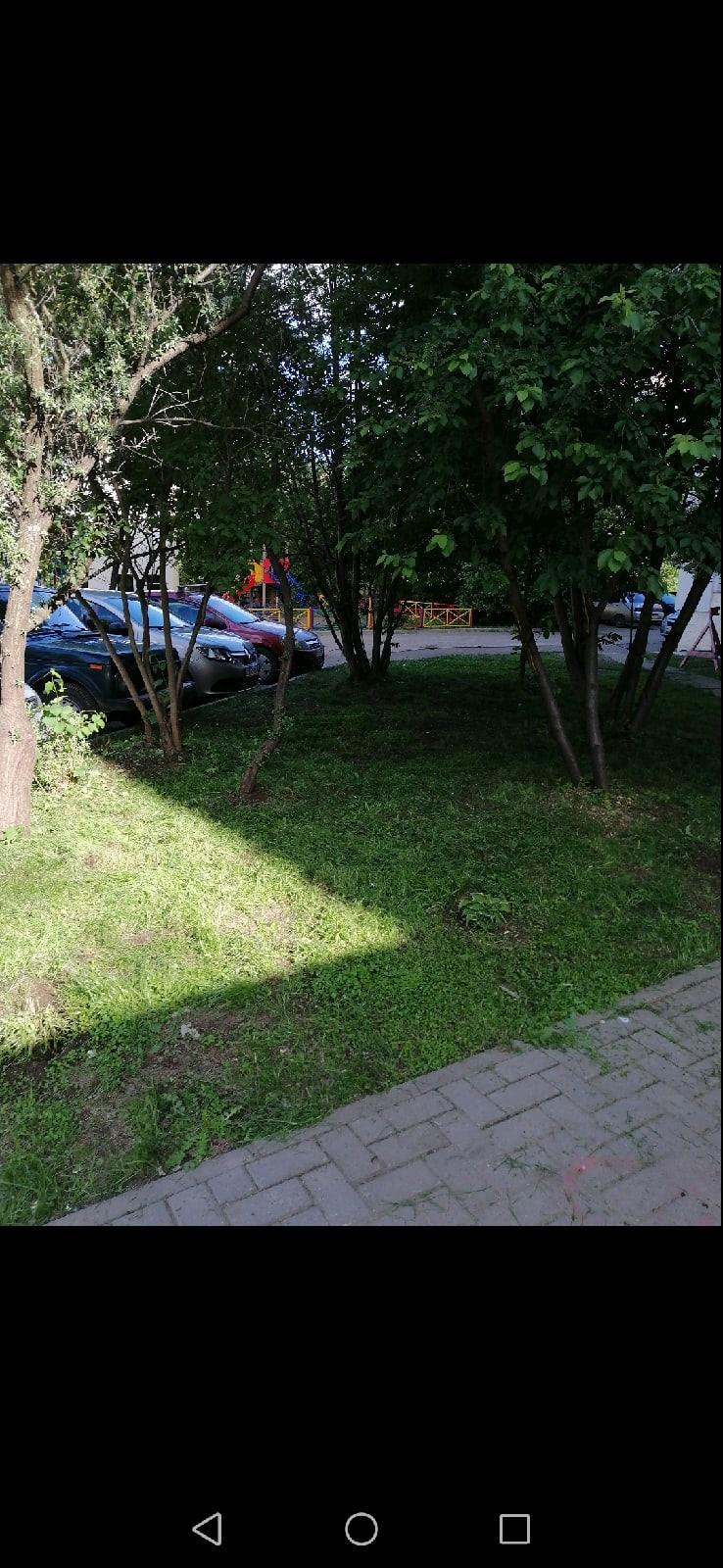 Скошены газоны и на Чехова 8