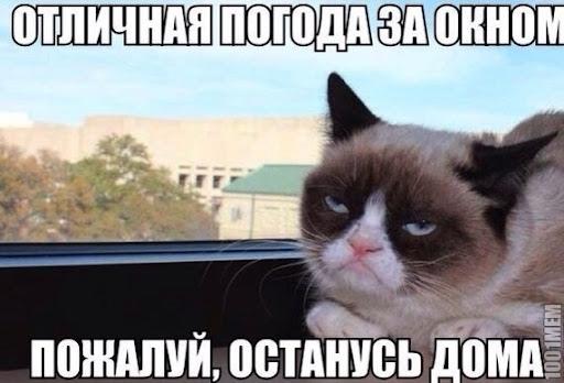 Октябрь нынче очень щедр ☀Новая неделя в Омской об...