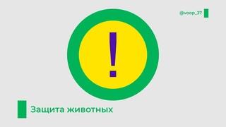 Защита животных | Иваново, Кинешма, Ивановская область