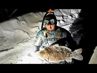 Подводная Охота на Крупных Рыб. Подводная Охота в Башкирии.