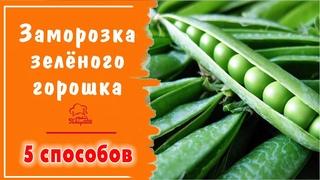 Как заморозить зеленый горошек на зиму  - 5 способов - ЗАМОРОЗКА горошка для супа, рагу в морозилке