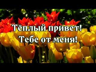Доброе утро! Удачного дня! Тёплый Привет!  Тебе от меня!💖😘🌺🌺🌺